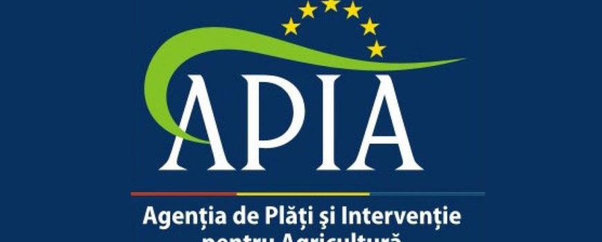 Control-Apia