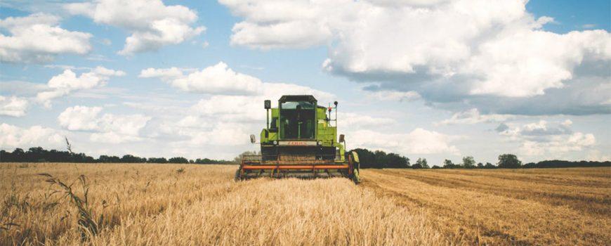 Raportul-Ministerului-Agriculturii-despre-subventii-APIA-si-ajutoare-platite-fermierilor!