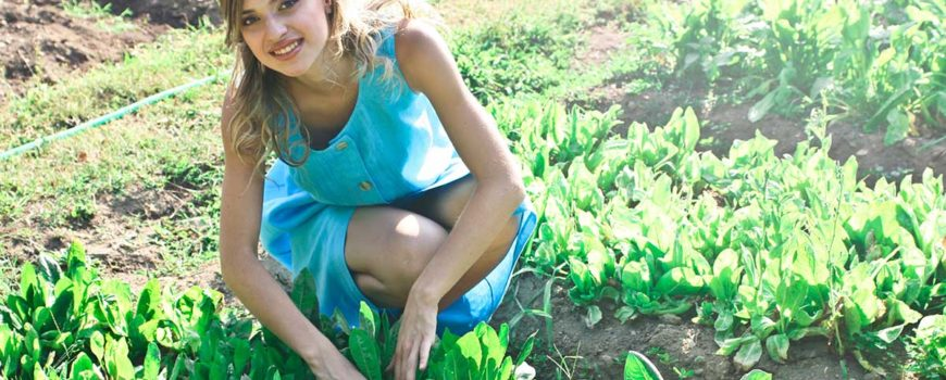 Cum-planuieste-MADR-sa-atraga-tinerii-in-agricultura