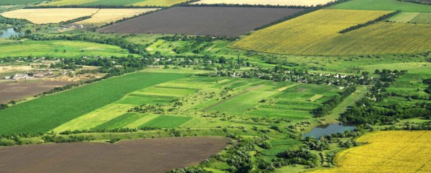 PIATA-terenurilor-agricole-se-DEBLOCHEAZA.-Vom-cunoaste-toti-proprietarii,-in-urma-procesului-de-cadastrare